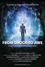 From Shock to Awe (2020)