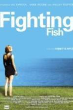 Fighting Fish ( 2010 )