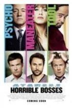Horrible Bosses ( 2011 )