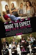 What to Expect When You're Expecting ( 2012 )