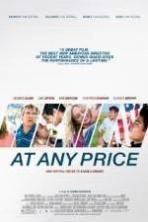 At Any Price ( 2013 )