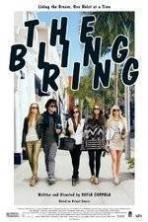 The Bling Ring ( 2013 )
