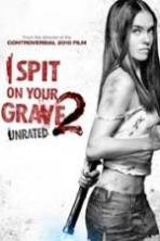 I Spit on Your Grave 2 ( 2013 )