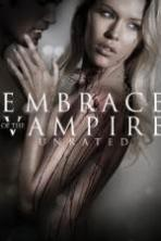 Embrace of the Vampire ( 2013 )