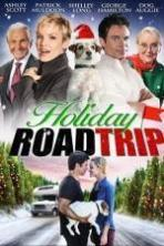 Holiday Road Trip ( 2013 )