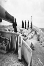 PQ17: An Arctic Convoy Disaster ( 2014 )