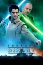 Threads of Destiny ( 2014 )