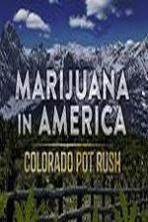 Marijuana in America: Colorado Pot Rush ( 2014 )