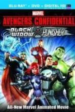 Avengers Confidential: Black Widow & Punisher ( 2014 )