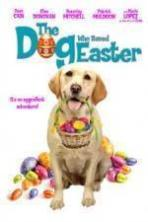 The Dog Who Saved Easter ( 2014 )