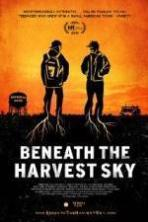 Beneath the Harvest Sky ( 2014 )