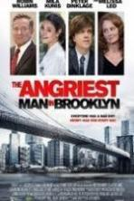 The Angriest Man in Brooklyn ( 2014 )