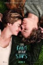 The Fault in Our Stars ( 2014 )