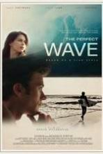 The Perfect Wave ( 2014 )