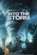 Into the Storm ( 2014 )
