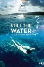 Still the Water ( 2014 )