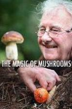 The Magic of Mushrooms ( 2014 )