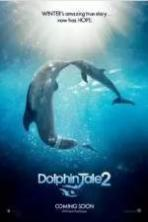 Dolphin Tale 2 ( 2014 )