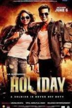 Holiday ( 2014 )