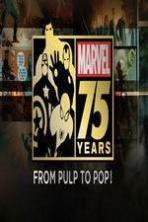 Marvel 75 Years: From Pulp to Pop! ( 2014 )