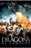 Dragons of Camelot ( 2014 )