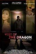 Fist of the Dragon ( 2014 )