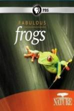 Nature: Fabulous Frogs ( 2014 )