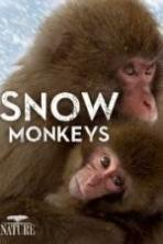 Nature: Snow Monkeys ( 2014 )
