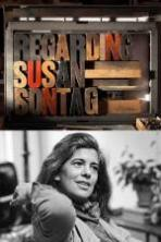 Regarding Susan Sontag ( 2014 )