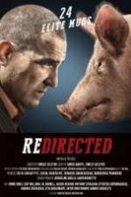 Redirected ( 2014 )