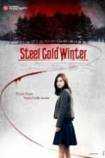 Steel Cold Winter ( 2013 )