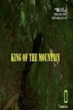 King of the Mountain ( 2014 )