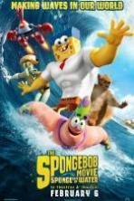 The SpongeBob Movie: Sponge Out of Water ( 2015 )