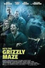 Into the Grizzly Maze ( 2015 )