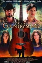 Like a Country Song ( 2014 )