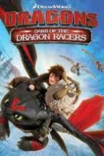 Dragons Dawn of the Dragon Racers ( 2014 )