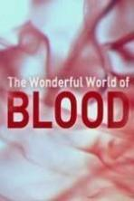 The Wonderful World of Blood with Michael Mosley ( 2015 )