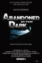 Abandoned in the Dark ( 2014 )