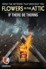If There Be Thorns ( 2015 )