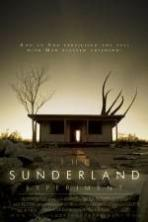 The Sunderland Experiment ( 2014 )