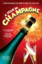 A Year in Champagne ( 2014 )