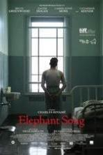 Elephant Song ( 2014 )