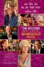 The Second Best Exotic Marigold Hotel ( 2015 )