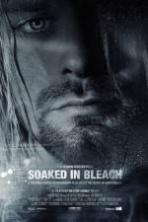 Soaked in Bleach ( 2015 )
