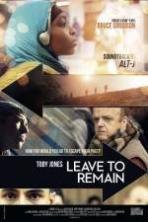 Leave to Remain ( 2013 )