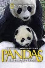Pandas: The Journey Home ( 2014 )