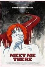 Meet Me There ( 2014 )