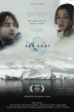 Red Knot ( 2014 )