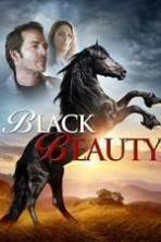 Black Beauty ( 2015 )