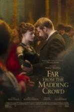Far from the Madding Crowd ( 2015 )
